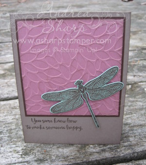 Dragonfly Prettiness