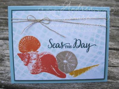 Summery Seashells