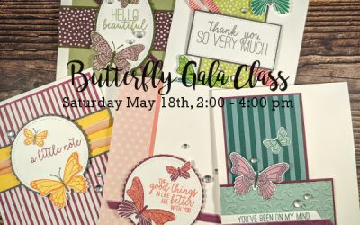 Butterfly Class