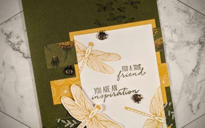 Inspiring Lady Bugs