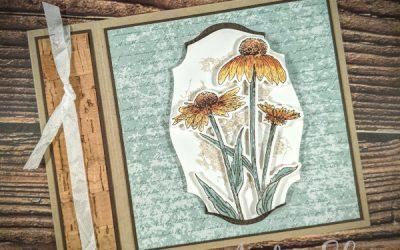Book Binding Echinacea